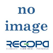 Recopa Ref: RCG3002018 --  GEAR 4th (35 T)