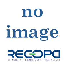 Recopa Ref: RCG3002008 --  SYNCHRONIZING ASSY.
